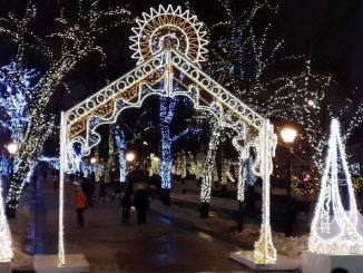 Встречаем Новый год в парке!